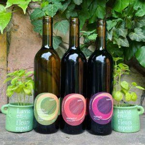badimi trio case - natural wines from Georgia
